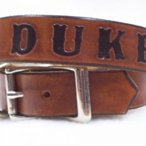 Personalized Dog or Cat Collar