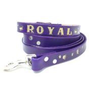 Purple Dog Collars, Personalized, Gilded Gift Collection